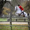 Equine Photography by Anna Pasquale, Cambridge UK
